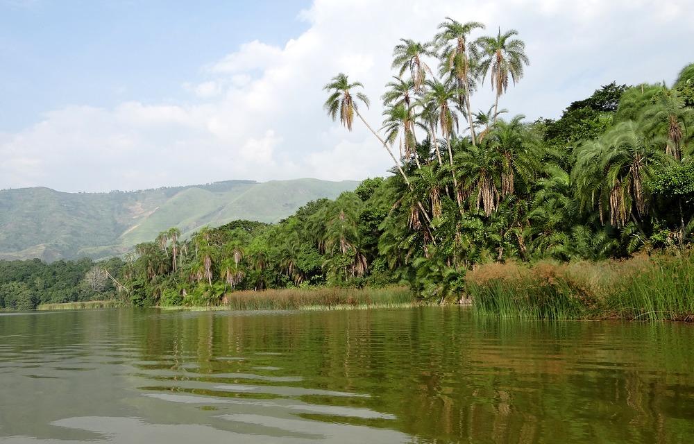 ouganda_ecosysteme_1.JPG