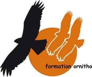 Formation ornitho logo