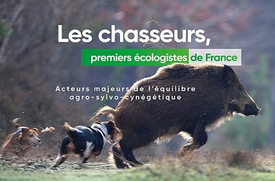 Affiche_Chasse