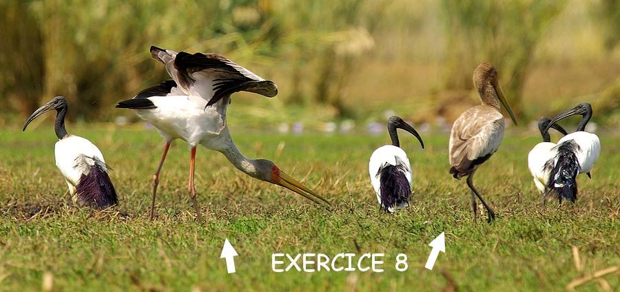 exercice_3cb_8