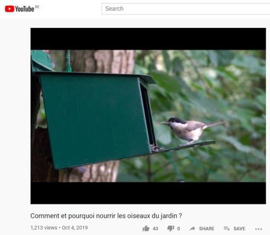 video_nourriture_oiseaux.jpg