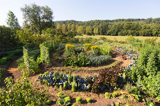 permaculture_terra_symbiosis